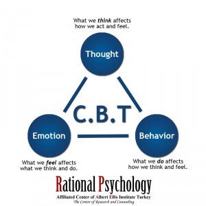 The main techniques of rational emotive therapy, behavior therapy and cognitive therapy